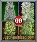 Automatic Mix 20 Buy Pure Marijuana Seeds by OO 00 Seeds USA