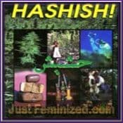 The Ultimate Guide To Everything Hashish quality book