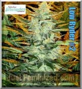 original low ryder # 2 automatic genetics joint doctor seeds
