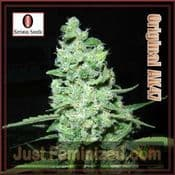 Serious original AK47 feminised female cannabis strain seeds