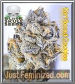 Girl Scout Cookies Black Skull - Buy from Trusted Cannabis Retailer