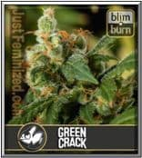 Blim Burn Seeds Bank Green Crack Feminised Cannabis Strain
