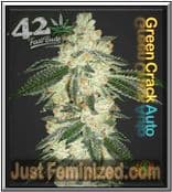 Fast Buds Auto Green Crack Feminised Cannabis Seeds