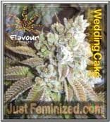 Flavour Chasers Wedding Cake - Guaranteed Fresh or 50% OFF