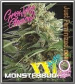 Growers Choice Monster Bud XXL Auto - Guaranteed Fresh or 50% OFF