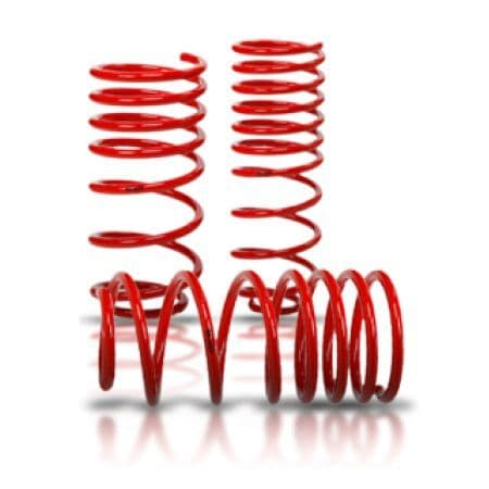 Focus MK2.5 RS-V-Maxx Lowering Spring Kit