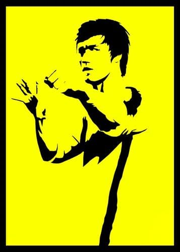 1970's Movie - ENTER THE DRAGON - BRUCE LEE SILHOUETTE / canvas print - self adhesive poster - photo