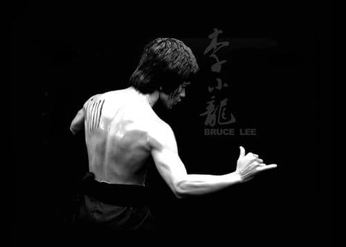 ICONIC - BRUCE LEE BLACKOUT canvas print - self adhesive poster - photo print