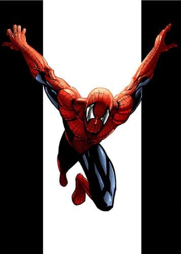 SPIDER MAN - FLY BLACK ON WHITE canvas print - self adhesive poster - photo print