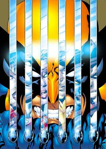 WOLVERINE - CLAW REFLECTIONS canvas print - self adhesive poster - photo print