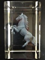 Stallion 3D Etched Glass Block