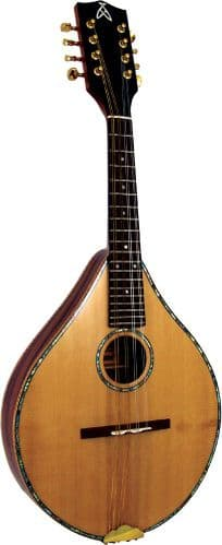 Ashbury GR31017 Celtic Mandolin-Maple, spruce.