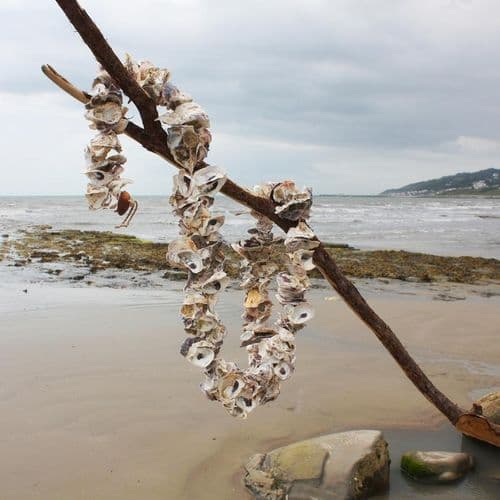 Oyster Shell Garland