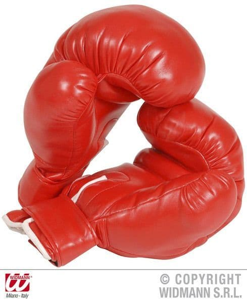 Adult Unisex Boxing Gloves Prof Sport Wwf Mexican Fighting Fancy Dress
