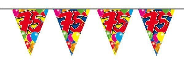 Balloon Design Bunting 75th Birthday