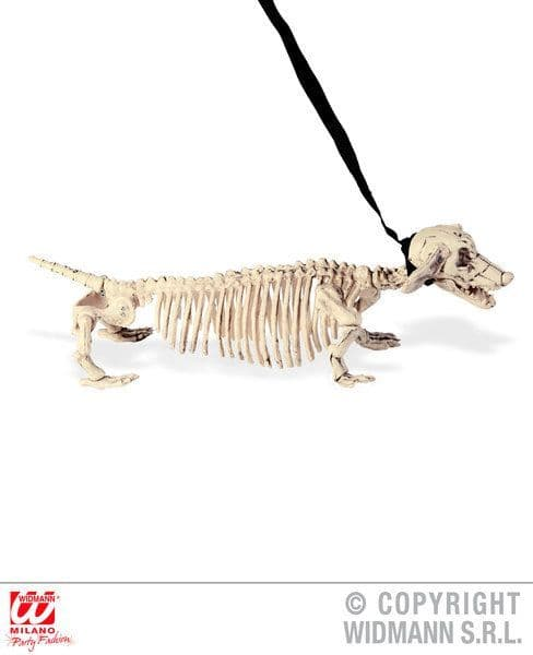 Dachshund Skeleton W/ Leash 55cm Prop Decoration Halloween Walking Dead Trick Or