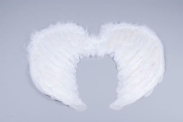 Mini Feather Wings Fairy Angel Fancy Dress