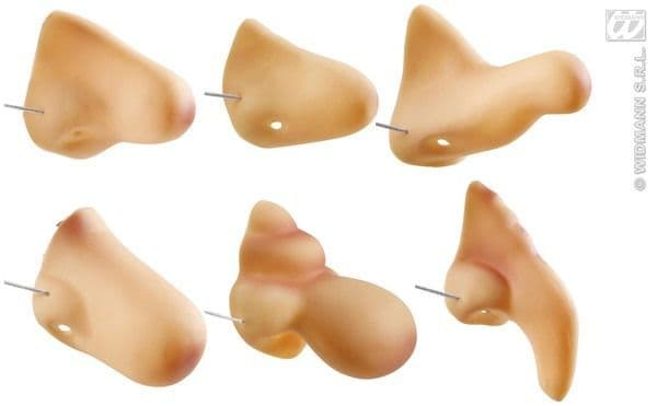 Noses 1 From 6 Styles Fancy Dress Cosplay Outfit Cosmetic SFX Accessory