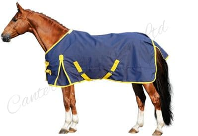 Canter Lightweight No Fill Turnout Rug