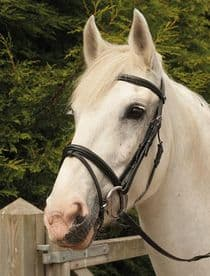 Heritage English Leather Bridle with Flash