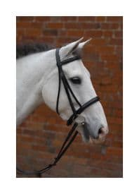 Hy Padded Cavesson Bridle with Rubber Grip Reins~Black