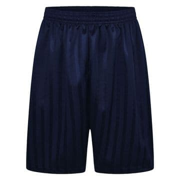 Shadow Stripe Shorts - Navy