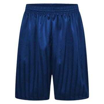 Shadow Stripe Shorts - Royal