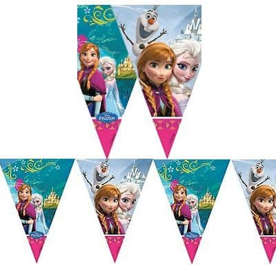 Bunting: Disney Frozen happy Birthday Flag banner