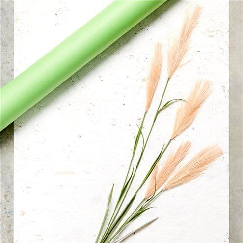 Floral: Beige Pink Pampas Grass Decoration - 1.45m