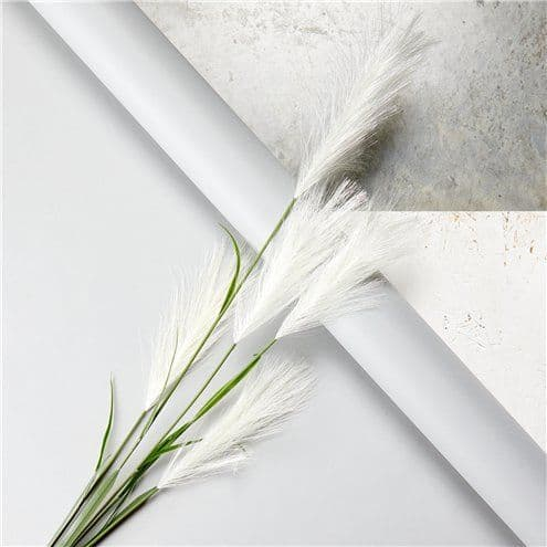 Floral: Cream Pampas Grass Decoration - 1.45m