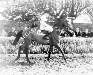 Arkle with Pat Taaffe (b496-02)