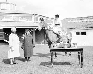 Arkle with Pat Taaffe (b496-06)