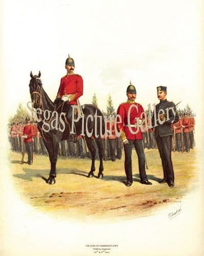 Duke of Cambridges Own Middlesex Regiment (57th & 77th Foot)