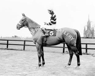Lescargot with Tommy Carberry (591-01a)