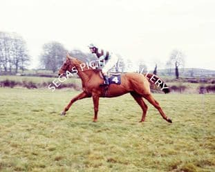 Lescargot with Tommy Carberry (708-01)