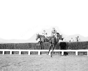 Limber Hill with J Power (282-03)