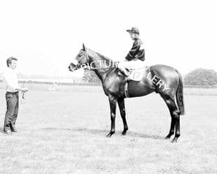 Mill Reef with Geoff Lewis (610-02)