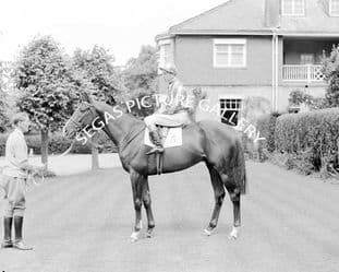 Never Say Die with Lester Piggott (139-01)