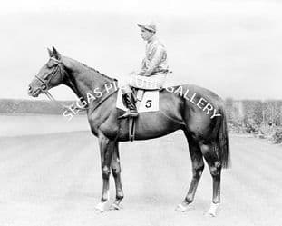 Never Say Die with Lester Piggott (139-01a)
