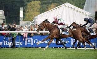 Oratorio & Early March & Layman in Sheikh Mohammed colours (A003-16)