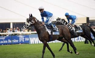 Policy Maker (A003-09)