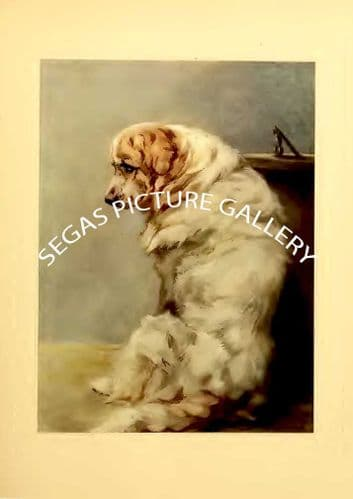 Fine art print of the PYRENEAN MOUNTAIN DOG by Maud Earl (1910)