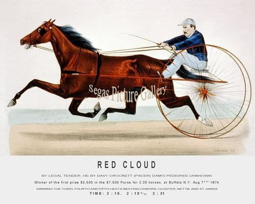 Fine art Horseracing Print of the 1800's Racing and Trotting of Red Cloud Winner of the first prize $3,500 in the $7,500 Purse for 2:20 horses, at Buffalo N.Y. Aug 7th 1874