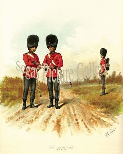 Royal Munster Fusiliers (101st & 104th)