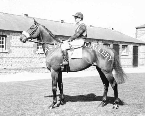 Racehorse Vermillion with Jockey Fred Winter