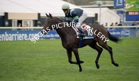 Racehorse Vicalex with Jockey Olivier Peslier