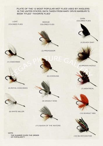 Fine art print of the Wet Flies (12 popular wet flies) by H H Leonard (1914)