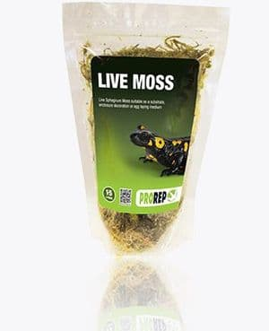 Pro Rep Live Moss 1.5L or 3L, humid hides for tortoises - free post
