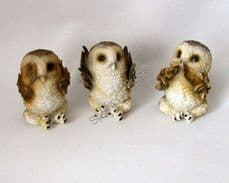 Three Wise Brown Owls.