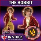 ~ LORD OF THE RINGS BILBO BAGGINS SMALL AGE 3-4
